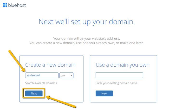 Choosing Your Bluehost Domain Name Tosinajy