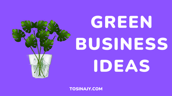 Green Business Ideas - Tosinajy
